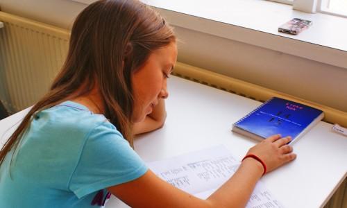 basisschoolbegeleiding Den Bosch