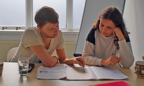 Huiswerkbegeleiding, Examentraining, Bijles