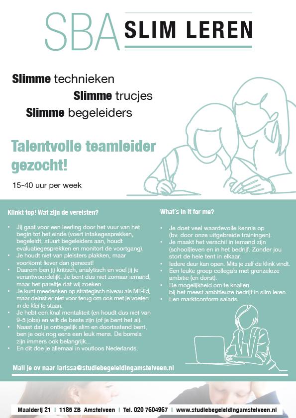 TEAMLEIDER-SBAweb